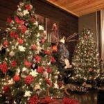 Πόσο Ελληνικό είναι το Χριστουγεννιάτικο Δέντρο;