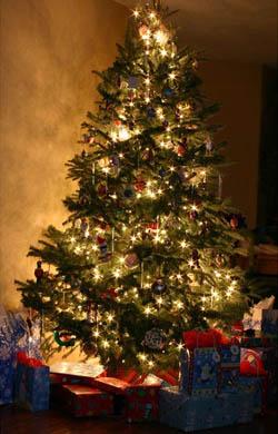 Χριστουγεννιάτικα Ήθη και Έθιμα